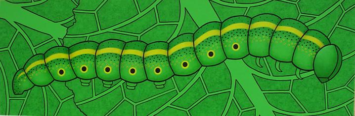 Caterpillar - SOLD